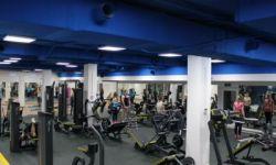 Современный фитнес центр с положительной экономикой