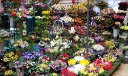 Цветочный магазин в тц