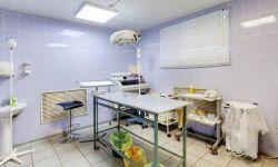 Ветеринарная клиника в густонаселенном районе