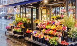 Цветочный магазин — готовый бизнес