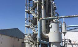 Томатный завод в Казахстане