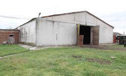 Животноводческая ферма для содержания 300 голов