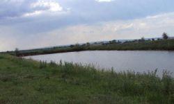Ферма для выращивания С/Х животных и земельный участок