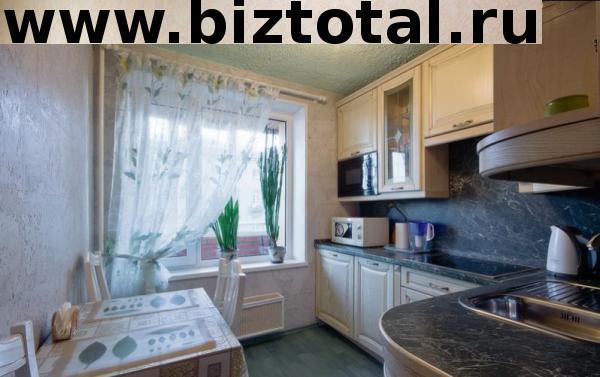 Уютная квартира со всей необходимой мягкой мебелью (Пушкина, 82)
