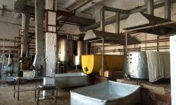 Завод по переработке молока в Новосибирской области
