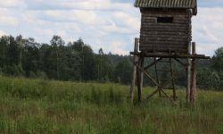 Охотхозяйство в Ярославской области