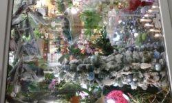 Цветочный павильон
