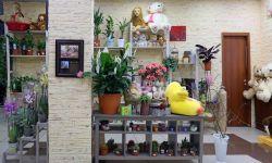 Прибыльный салон цветов