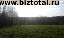 Земельный участок в Валдайском районе, Борисово