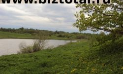 Земельный участок в Маревском районе, Малое Демкино