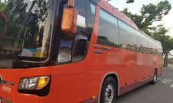 Туристический автобус Kia Granbird Silk Road