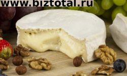 Бизнес по производству премиального сыра