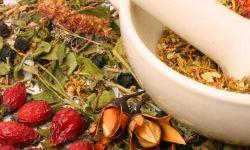 Производство пищевых добавок на растительной основе