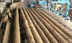 Лесопильно-деревообрабатывающее предприятие