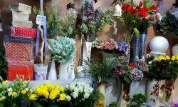 Магазин (удобрения для сада и огорода, средства для борьбы с бытовыми насекомыми)