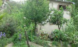 Земельный участок с домом (ул. Санаторная)