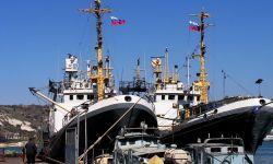 Продаём готовый высоко рентабельный бизнес по добыче рыбы в Дальневосточном бассейне.