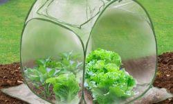 Полимерное производство для сада и огорода