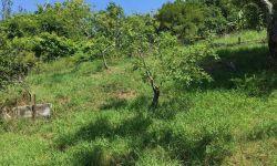 Продам солнечный видовой земельный участок в Сочи на Ахуне. Расположен в Хостинском районе ул.Дорога на Большой Ахун. Участок площадью 5,5 сот с видом на море. Коммуникации – электричество, водоснабжение, газовые магистрали — по границе участка. На участк