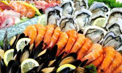 Оптовая торговля морепродуктами - 1млн чистой приб