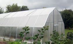 Тепличный модуль - Выращивание органической зелени