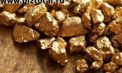 Добыча золота предприятие готовый бизнес