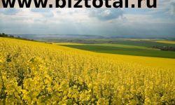 Земельный участок под рапс в Забайкальском крае (57600Га)